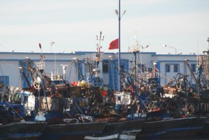"""بحارة وأرباب قوارب الصيد التقليدي يحتجون ضد مندوبية الصيد البحري بعد وفاة بحار بميناء """"سيدي إفني"""""""
