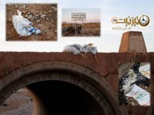 بقايا الدجاج الميت والنفايات الطبية على صفحات جريدة المساء