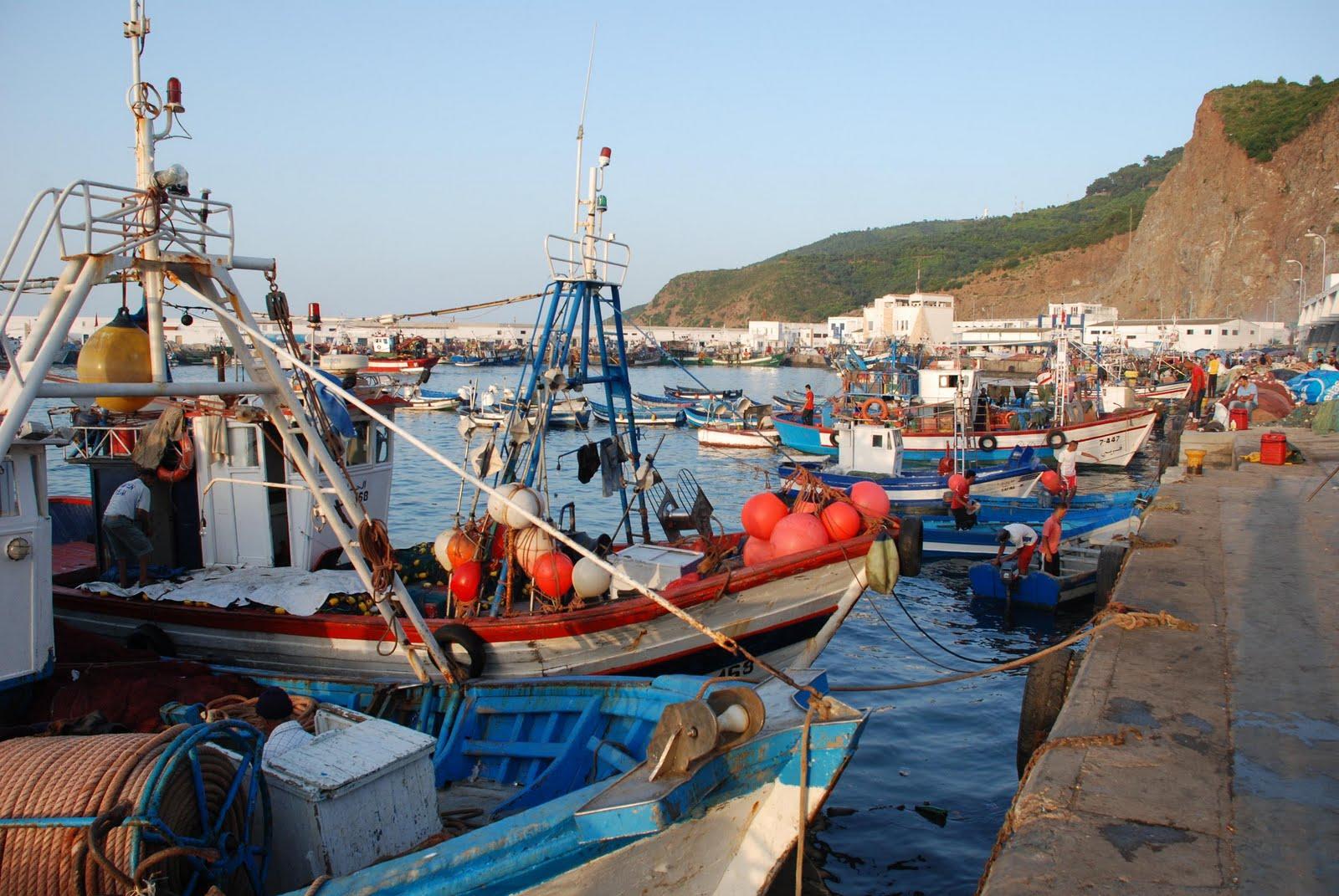 تبرئة ربابنة الصيد من تهم عرقلة حرية العمل