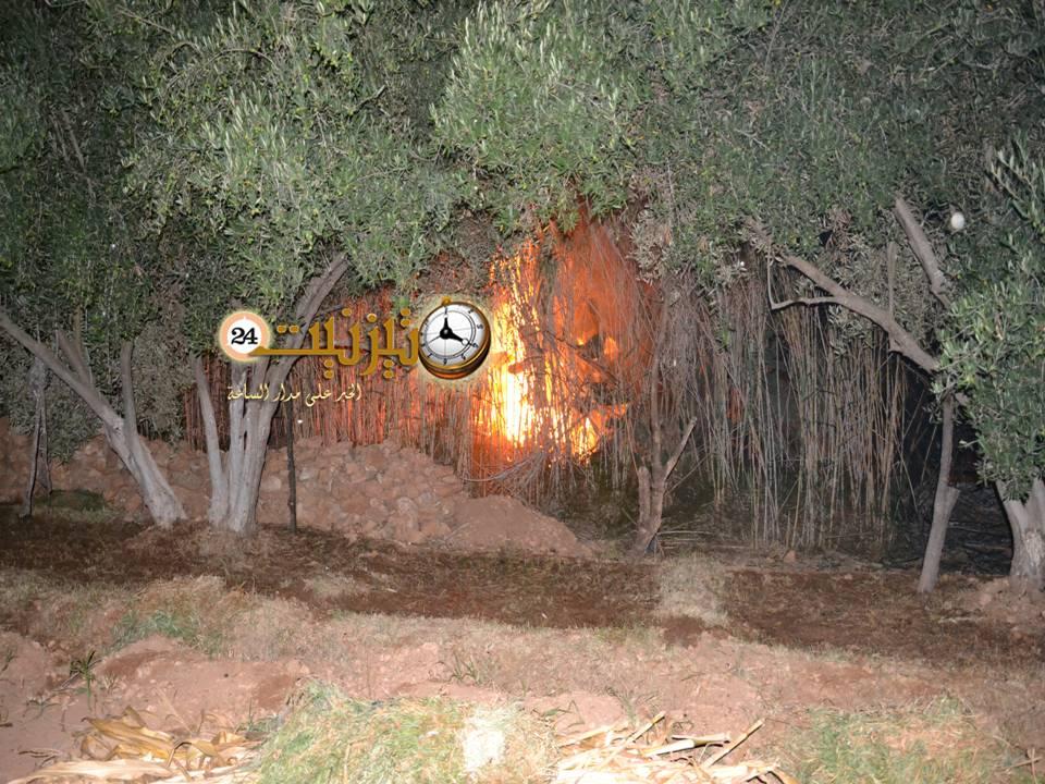 حريق بمزارع تاركا منتصف ليلة أمس الإثنين والأسباب لا تزال مجهولة / مرفق بالصور