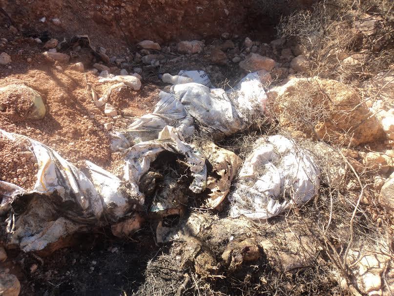 """رائحة الدجاج الميت تؤرق بدوار """"إد السرغني"""" تؤرق السكان بين جماعتي بونعمان وأولاد جرار"""
