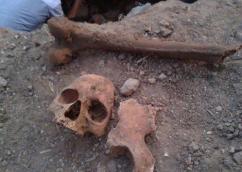 اكتشاف بقايا عظام بشرية بضواحي تيزنيت