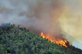 تدابير الوقائية لمواجهة خطر حرائق الغابات بإقليم سيدي إفني