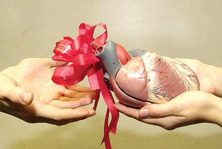 أسئلة وأجوبة حول التبرع بالأعضاء والأنسجة البشرية .