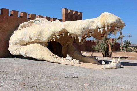 افتتاح حديقة للتماسيح بأكادير