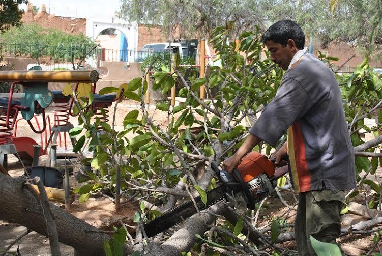 تشييد فضاء جديد للأطفال بحديقة الزرقطوني بتيزنيت