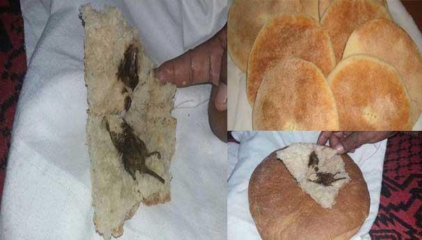 مقزز: مواطن يشتري الخبز ويكتشف وجود فأر بداخله