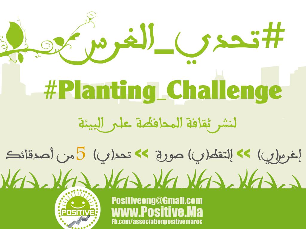 شباب مغاربة يرفعون تحدي للعالم من نوع خاص
