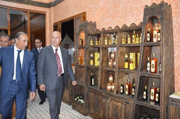 تيزنيت: أنيس بيرو يكشف تغير تركيبة الجالية المغربية بالخارج ويؤكد انطلاق الإجراءات الاستعجالية بالقنصليات