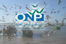 مهزلة: مندوب المكتب الوطني للصيد البحري يتلفظ بكلمات نابية في حق بحار بميناء سيدي إفني