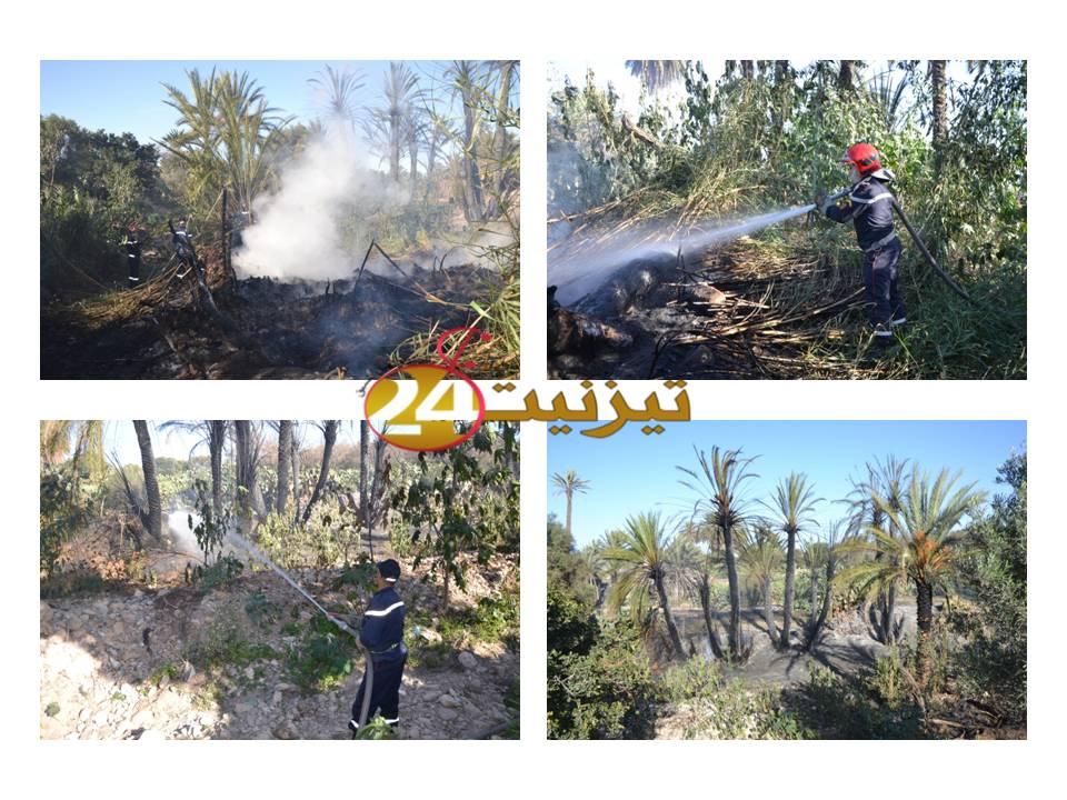 حريق يأتي على أزيد من 56 شجرة بمزارع تاركا بتيزنيت