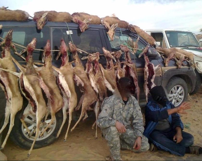 المنظمة المغربية للمحافظة على البيئة والمواطنة فرع تيزنيت تدخل على الخط في ملف الغزلان