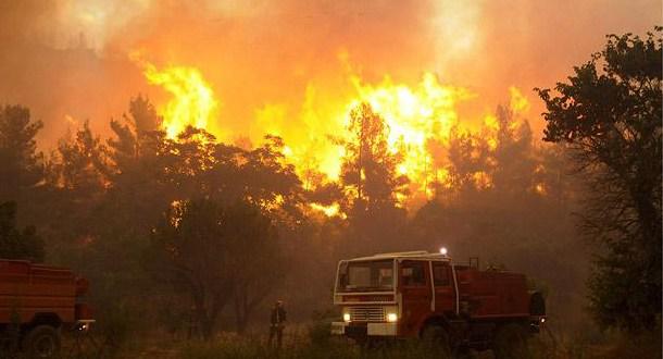 235حريقا في المغرب تلتهم 1500 هكتار خلال ثمانية أشهر فقط