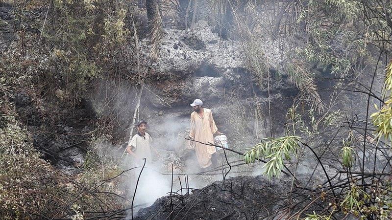 حريق مهول يندلع بواحة دوار أكلز جماعة أملن تافراوت (صور)